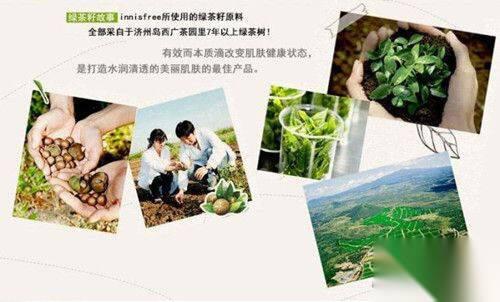 悦诗风吟绿茶系列有哪些产品 悦诗风吟绿茶系列使用顺序 第2张